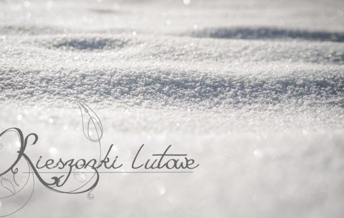 winter-260817_960_720