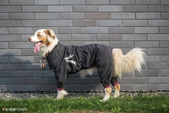 Slush Combat Suit, 55 M, granite/pink